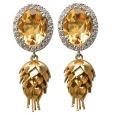 Earrings: Golden Protea